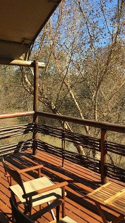 Madikwe Game Reserve, Sydafrika: photo2.jpg