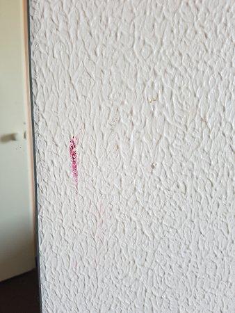 Ibis Roissy CDG Paris Nord 2: Tâches sur les murs.