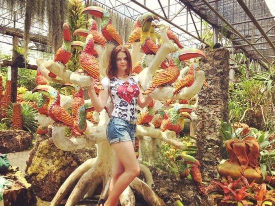 Nong Nooch Tropical Botanical Garden : photo7.jpg