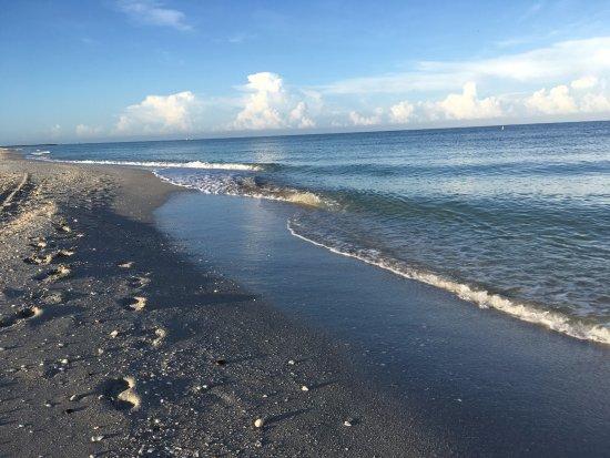 Nokomis, FL: Shoreline