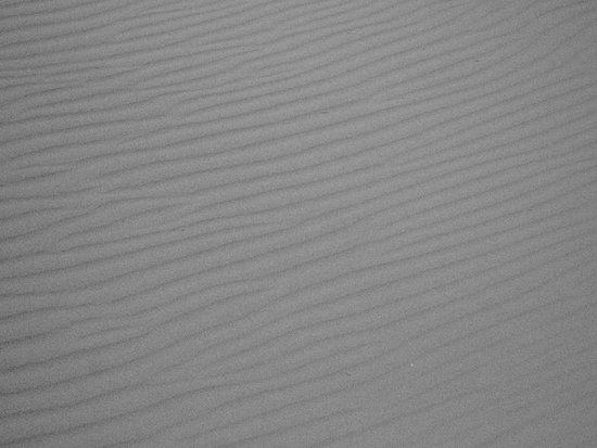 Lido di Ostia, Italia: Il vento disegna sulla sabbia