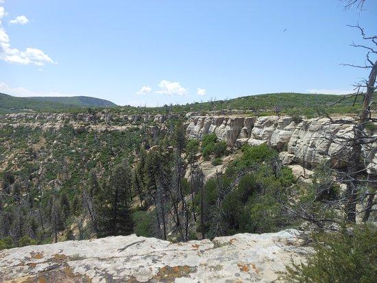 Prater Ridge Trail: View from atop Ridge