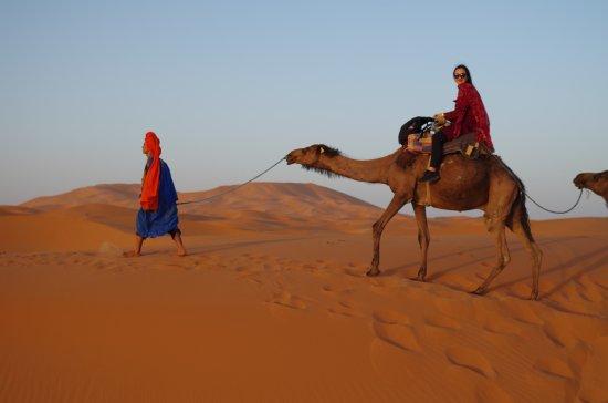 Casablanca, Maroko: Camel ride in the Sahara dessert.