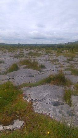 Carran, İrlanda: IMAG0224_large.jpg