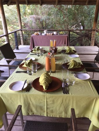 Madikwe Game Reserve Bild