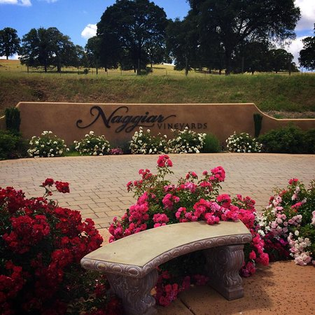 Naggiar Vineyard & Winery: round about entrance