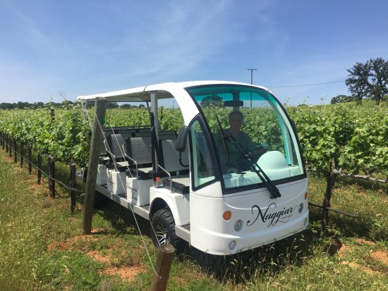 Grass Valley, Καλιφόρνια: Eco shuttle vineyard tours take you all over and through the vineyard