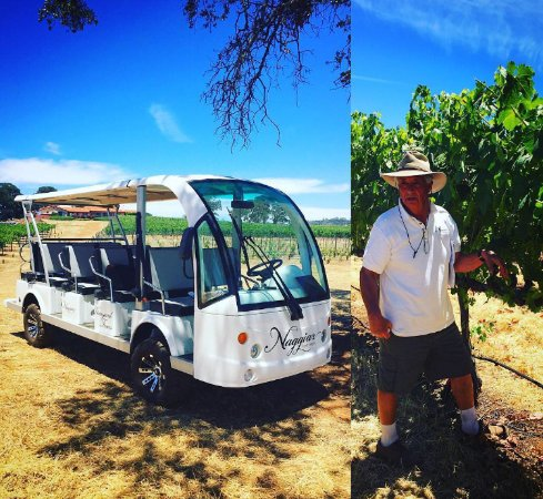 Grass Valley, Califórnia: Mike Naggiar giving a tour of the vineyard with the eco Shuttle