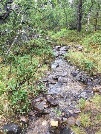 Saariselka, Finlandia: Urho Kekkonen National Park