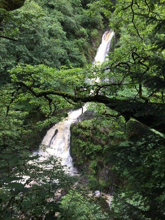 Devil's Bridge (Pontarfynach), UK: One section of the 200ft cascade seen from the various viewing point on the nature trail.