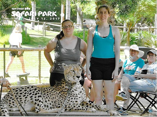 Escondido, CA: Cheetah Run - San Diego Safari Park