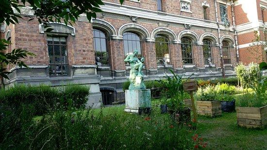 Jardin des plantes paris ce qu 39 il faut savoir tripadvisor - Jardin des plantes paris horaires ...