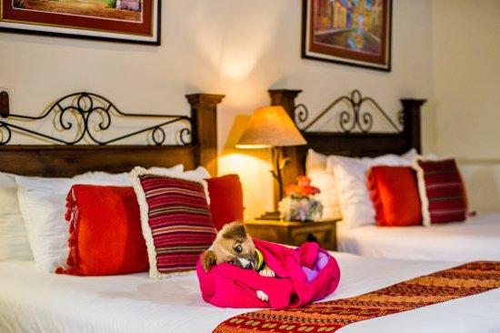 호텔 메종 델 발레 사진