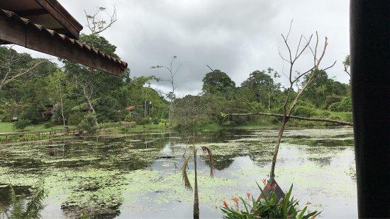Boca Tapada, Kosta Rika: photo2.jpg
