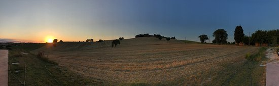 Birrificio Laurus - Brewpub Agricolo