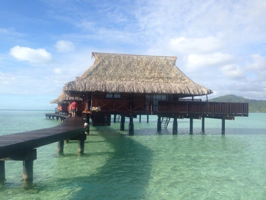 Vahine Island Resort & Spa: photo7.jpg