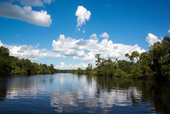 Arcadia, FL: The Peace River aboard the Air Boat