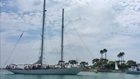 Curlew Charters ⛵️returning back to DANA POINT HARBOR!