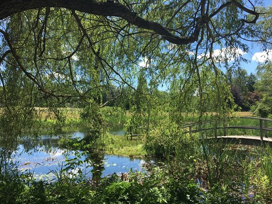 Leominster, MA: A lovely pond