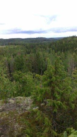 Parikkala, Finland: Mahtavat maisemat korkeimmalta kohdalta