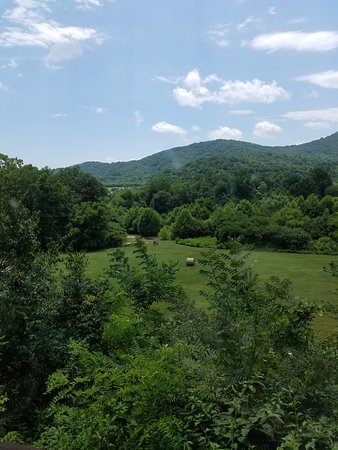 Nellysford, VA: View from the dinning room