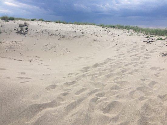 Race Point Beach: photo6.jpg