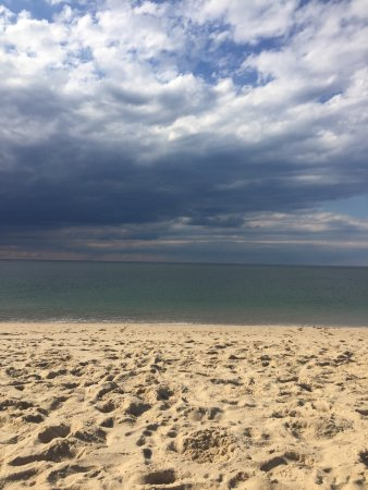 Race Point Beach: photo7.jpg