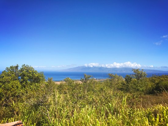 Ka'anapali, HI: View from one of the lines