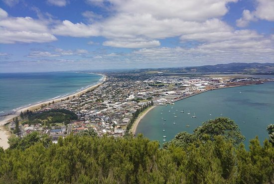 Mount Maunganui, Nieuw-Zeeland: A view from the top, overlooking the town and the Bay of Plenty