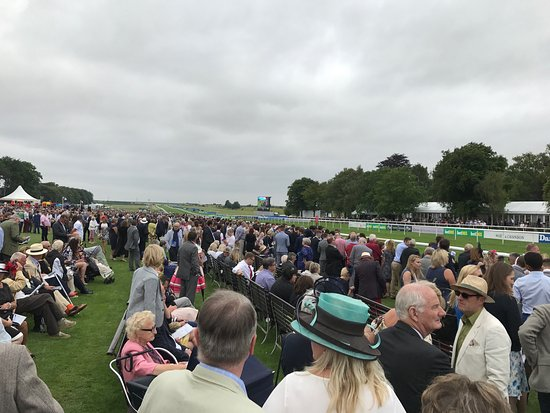 Newmarket, UK: Looking down the course