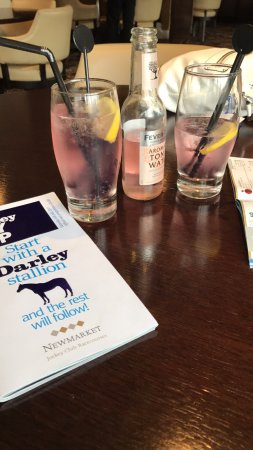 Newmarket, UK: Pink G&T's in the Bar