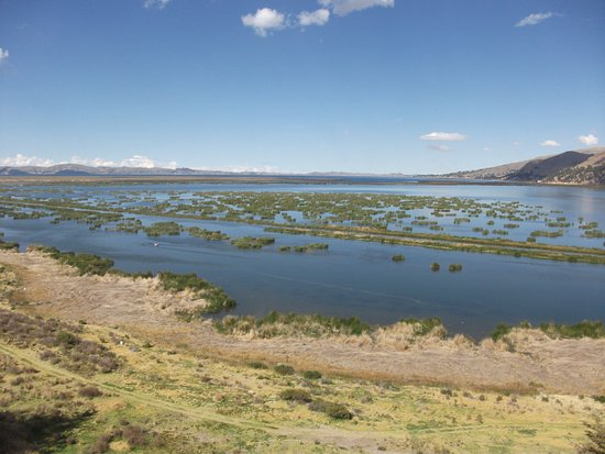 Libertador Lake Titicaca: View from room of reeds in Lake Titicaca