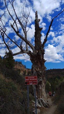 Enguidanos, สเปน: camino de acceso al rio