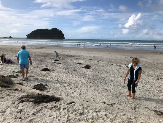Belle Mer Beachfront Apartments: The wonderful Mt Maunganui beach is immediately across the road.