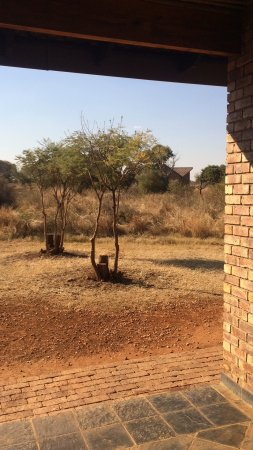 Sondela Nature Reserve Accommodation: photo8.jpg