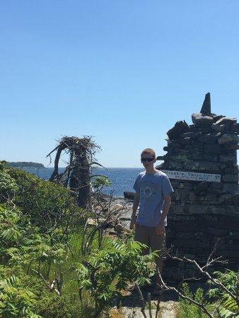 Cabbage Island : photo4.jpg