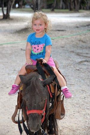 Mayan Dude Ranch: Minateure horse rides for ages 2-6 (5-8 minutes) at Mayan Ranch