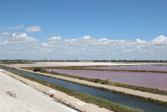 Aigues-Mortes, Γαλλία: The rose colour of the water is caused by microscopic algae.
