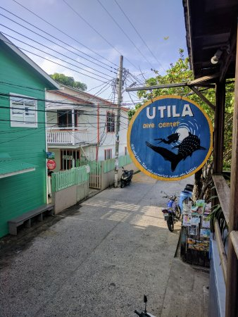 Utila, Honduras: This is UDC
