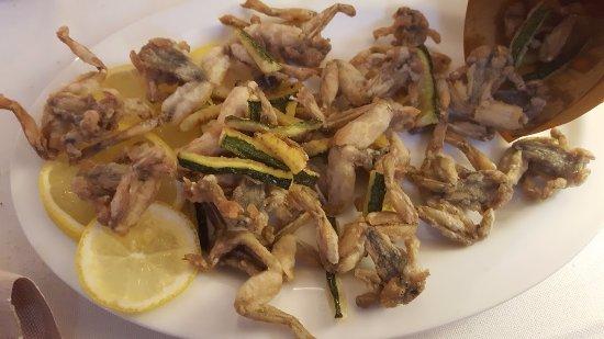 Gattinara, Italia: frogs (fried whole) - a seasonal specialty