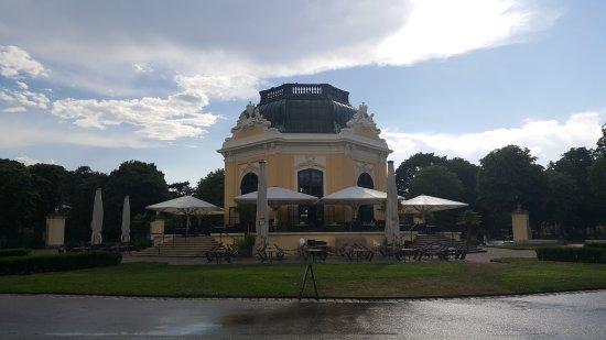 Tiergarten Schoenbrunn - Zoo Vienna : 20170706_171206_large.jpg