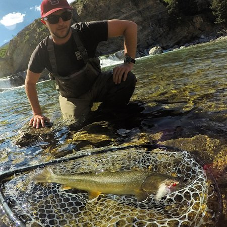 Bow River Fly Fishing Tours