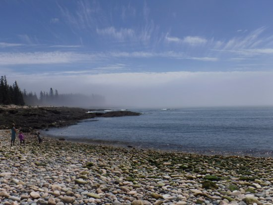 Southwest Harbor, ME: As the fog lifted...