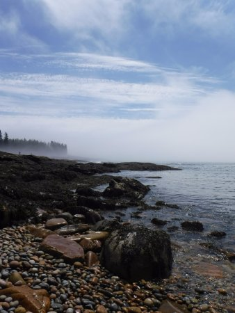 Southwest Harbor, ME: Beautiful even with some fog!