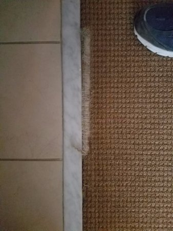 La Quinta, CA: Thread-bare carpet