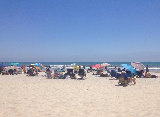 Coronado, CA: photo3.jpg
