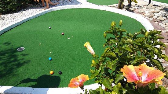 Golf Down Under
