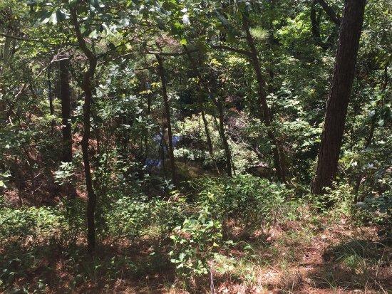 Kill Devil Hills, Carolina do Norte: photo5.jpg