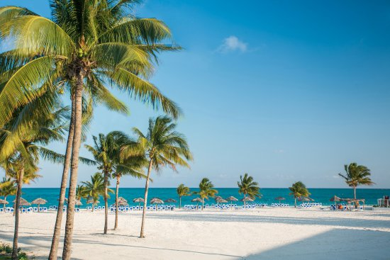 Viva Wyndham Fortuna Beach An All Inclusive Resort 126