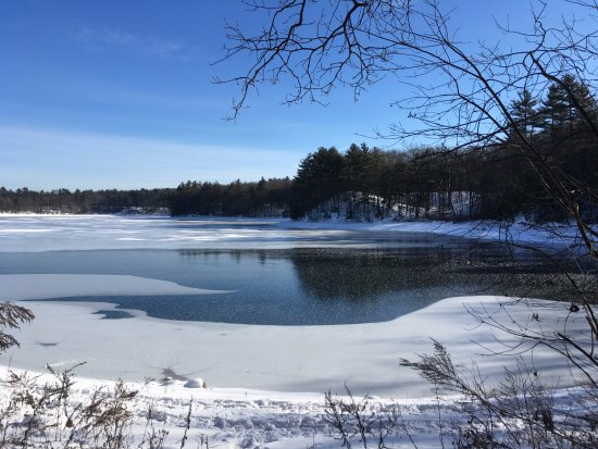Concord, MA: View of the pond from the path
